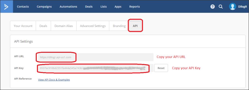 Step 2 - Click API then copy and paste API URL and API Key